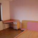 birou pat roz